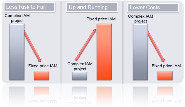 Advantages of fixed price IAM