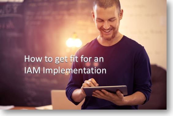 Fit for an IAM implementation